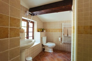 Cezanne Bathroom 1