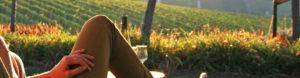 wine-tourist-banner