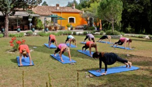 yoga-news