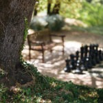 Chess maniacs are also very welcome at our chambre d'hôte Bastide Avellanne