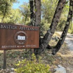 Entrance to Bastide Avellanne